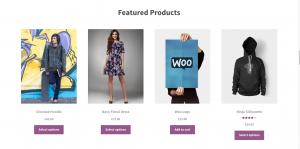 Numero de produtos por pagina no woocomerce